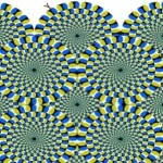 Optical Illusions Not Then Least Dozen Science Fair Projects