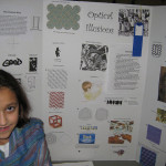Optical Illusions Science Fair Project Flickr
