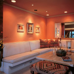 Orange Living Room Ideas Pictures Images Galleries Home