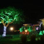 Outdoor Christmas Decorations Tree