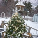 Outdoor Christmas Tree For The Birds Craft Ideas
