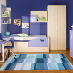 Paint Ideas For Boys Room Pictures Designs And