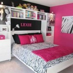 Paint Ideas For Girls Bedroom Combining Several Colors