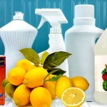 Pet And Eco Friendly Cleaning Solutions Green Pets
