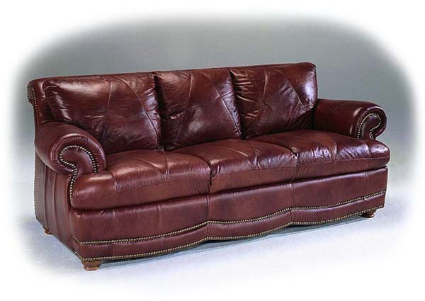 Pet Store Blend Water And Spray Your Leather Sofa