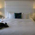 Picture Guest Room Bed Ocean Fort Lauderdale