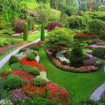 Pictures Gardens Front Landscaping Ideas
