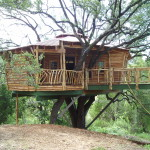 Pictures Tree Houses And Play From Around The World Plans