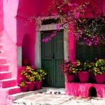 Pink House Wall Beautiful Color