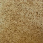 Quality Textured Paint And Durable Special Mocca Texture Wall Design