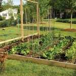 Raised Garden Beds Easy Build Bed Gardening Plans