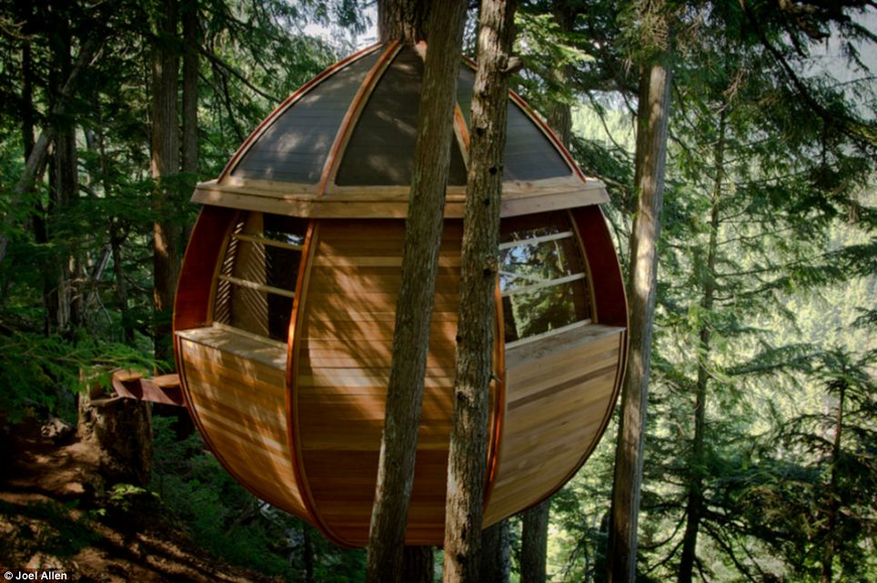 Rob His Bunker Secert Tree House Canada