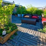 Rooftop Garden For The