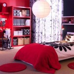Room Decorating Ideas For College Girl