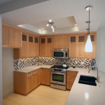 Shaped Kitchen Designs Design Ideas Pictures Remodel And Decor