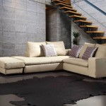 Shaped Sofa Designs Pictures