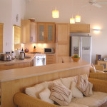 Simple Living Room And Kitchen Combined Home Decoration