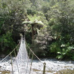 Simple Suspension Bridge Over Kauaeranga River Paul Morris