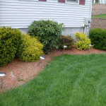 Simpledeisgn Simple Backyard Landscaping Ideas Which Look