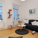 Small Apartment Decorating Tips Studio