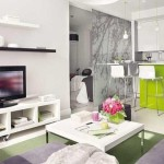 Small Apartment Interior Organizing Furniture