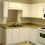 Small Apartment Kitchen Design New Color