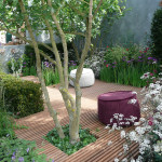 Small Garden Designs Pictures Landscaping