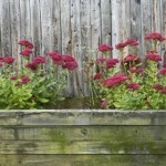 Small Garden Flower Bed Idea Use The Same Wood Decor Ide