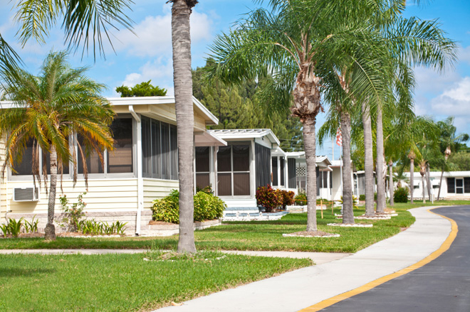 Small Manufactured Home Ornamental Trees