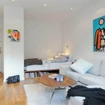 Small Studio Apartment Decorating Great Inspirations For