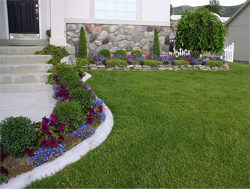 Small Yard Landscape Flower Beds Dry