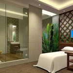 Spa Interior Design Massage Couch House Free