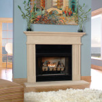 Stone Fireplace Designs Pictures Smaller Carved Cast
