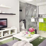 Studio Apartment Design Ideas Its Basic Differences Mycyfi