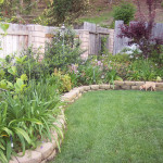 Teaching Plant Simple Backyard Landscaping Ideas For