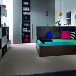 Teen Boy Room Decorating Pink And Blue Colors Framed Wall