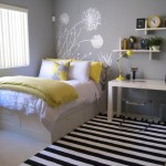 Teenage Bedroom Color Schemes Pictures Options Ideas Interior