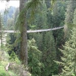 The Amazing Capilano Suspension Bridge