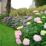 The Beautiful Landscaping Pictures Home Ideas Iyume