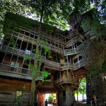 The Best Tree Houses World