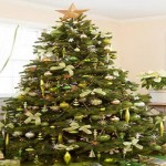 The Green Christmas Tree Decorations