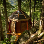 The World Best Tree Houses