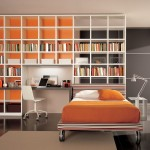 This Contemporary Young Bedroom Minimalist Bookshelves
