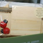 This Fabulous Make Your Own Insect House Kit Produced Apples