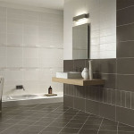 Tips For Your Bathroom Wall Tile Home And