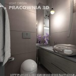 Toilet Small Space Contemporary Modern Apartment Design