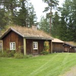 Traditional Swedish House Grass Roof Cabin Places Spaces
