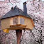 Tree Houses Fairy Tale Castles The Air Sustainable Diary