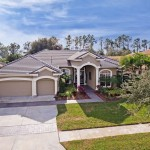 Tree Tops Luxury Westchase Homes For Sale