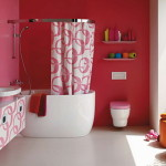 Various Popular Bathroom Themes Which You Can Choose For Your